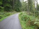 05.10.2012 Seibleseckle+Hornisgrinde